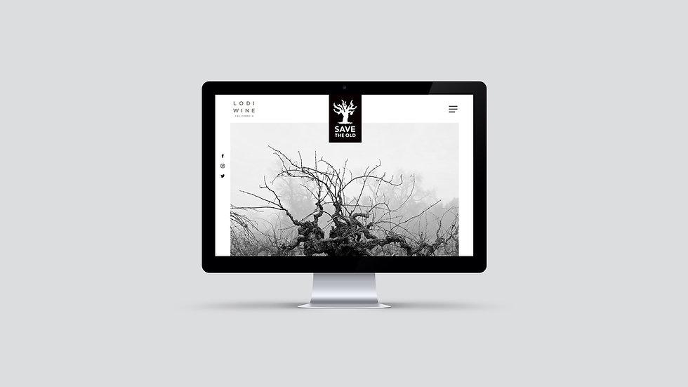 Lodi_save the old_homepage.jpg