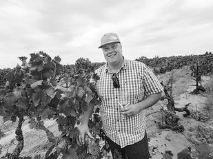 Can Zinfandel be saved? Conversation with Turley's Tegan Passalacqua