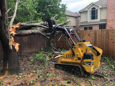 denton emergency tree removal_5 24 19.jp