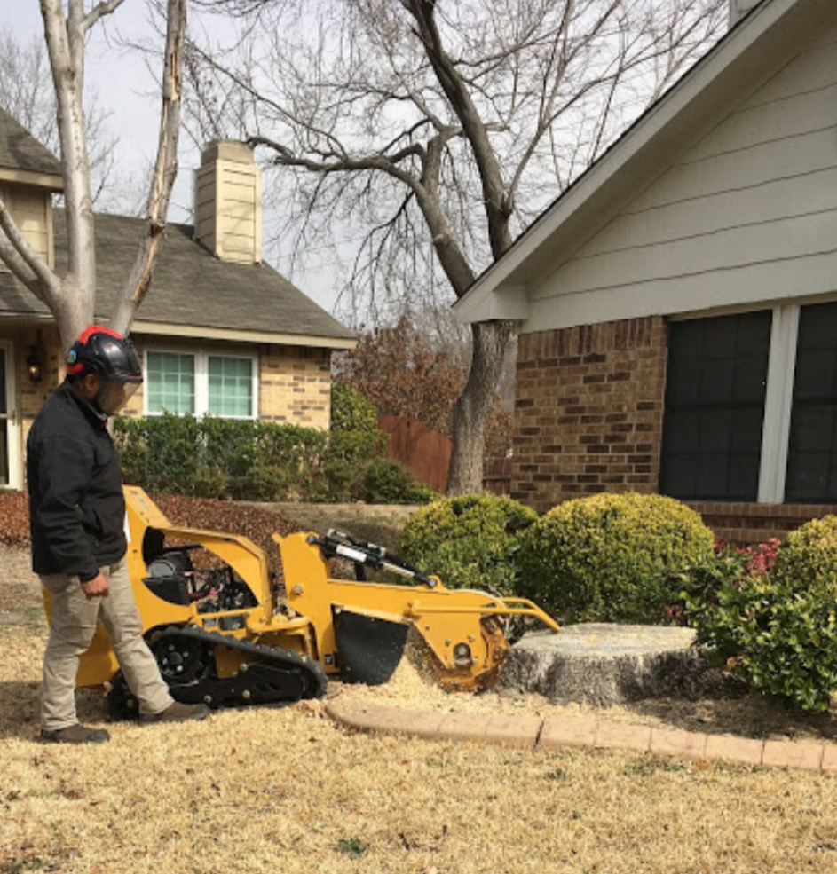 Stump Grinding_Clean Edge Tree Services.