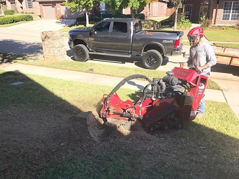 Stump Grinding Corinth TX_Clean Edge Tre