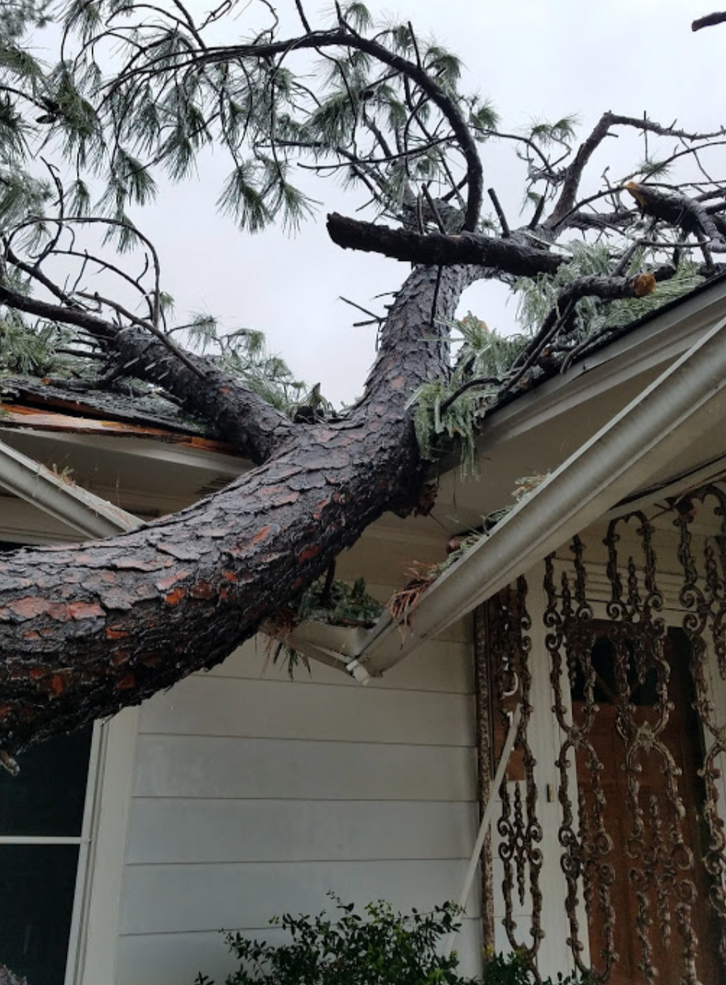Emergency Tree Services1.png