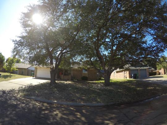 Live Oaks Tree Trimming Denton TX_Oct201