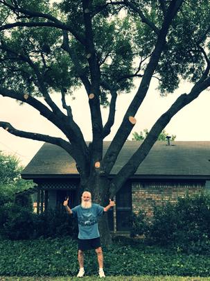 tree trimming Justin TX_edited.png