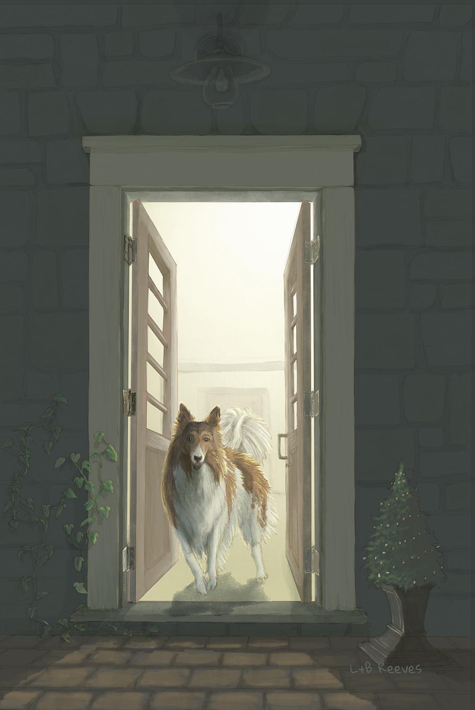 collie open door