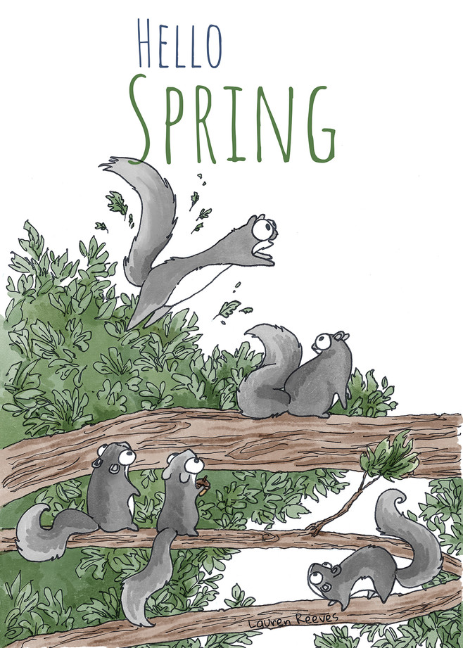 springing squirrel.jpg
