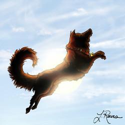 Sun Dog 2