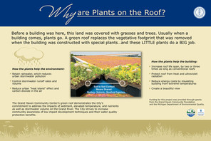 PlantsOnRoof_Horizontal.jpg
