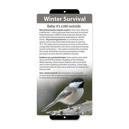 Winter Bird Survival