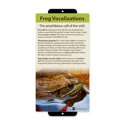 Frog Vocalizations
