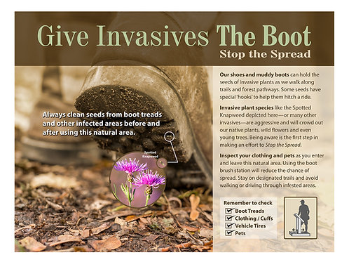 Give Invasives the Boot 18x24