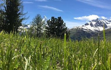 Sommer_Wanderungen_Capricorn_Zermatt