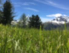 Capricorn_Wanderzeit_Gletscher_Capricorn_Wandern_Zermatt