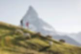 hiking_unlimited_hotel_capricorn_zermatt