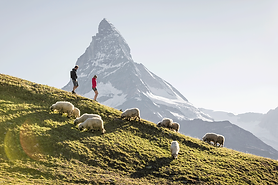 hiking_unlimited_hotel_capricorn_zermatt