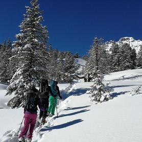 Waldwandern_Wandern_Capricorn_Zermatt.JPG