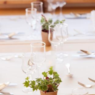 Abendessen im Hotel Capricorn