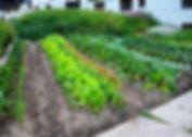 Bio_garden_Hotel_Capricorn_Zermatt