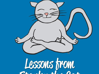 2nd Edition of Lessons from Stanley The Cat is now LIVE on AMAZON!!!