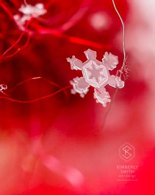 Christmas Tree Snowflake