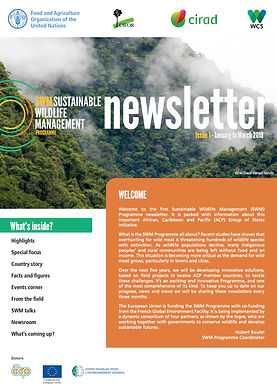 SWM Newsletter-Issue 1-January to March