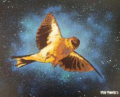 Pássaro Stencil e spray sobre tela. Tamanho: 40cmx50cm  Para venda. Entre em contacto para detalhes. | For sale. Contact for details.  Bird Stencil and spray on canvas. Size: 40cmx50cm