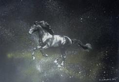 Cavalo Cinzento Stencil e spray sobre tela. Tamanho: 40cmx50cm  Para venda. Entre em contacto para detalhes. | For sale. Contact for details.  Gray Horse Stencil and spray on canvas. Size: 40cmx50cm