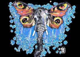 Elefante-Borboleta Série de desenhos de animais com asas de borboleta. Pintados com os marcadores One4all da Molotow. Tamanho:21cmx29,7cm  Trabalho encomendado. Não está à venda | Commissioned work. Not for sale.  Elephant-Butterfly Series of drawings of animals with butterfly wings. Painted with Molotow's One4all markers. Size: 21cmx29.7cm