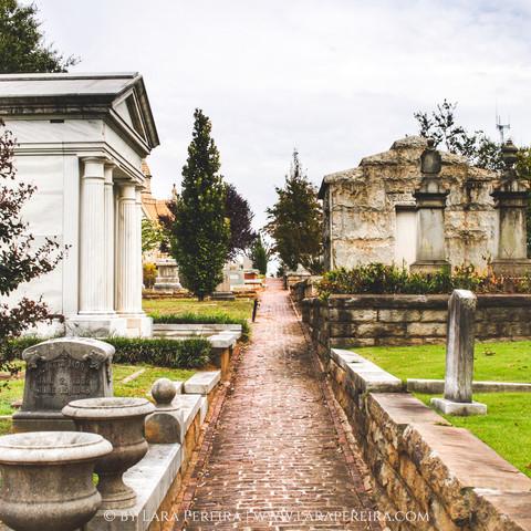 """Historic Oakland Cemetery"""