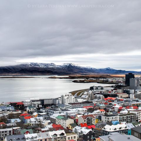 """""""Reykjavik Rooftops"""""""