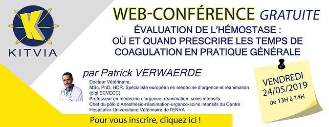 201905 - bandeau webconference PV.jpg