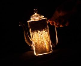 しげみ_In the Jar