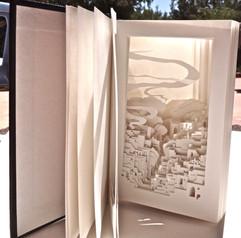 ZION BOOK