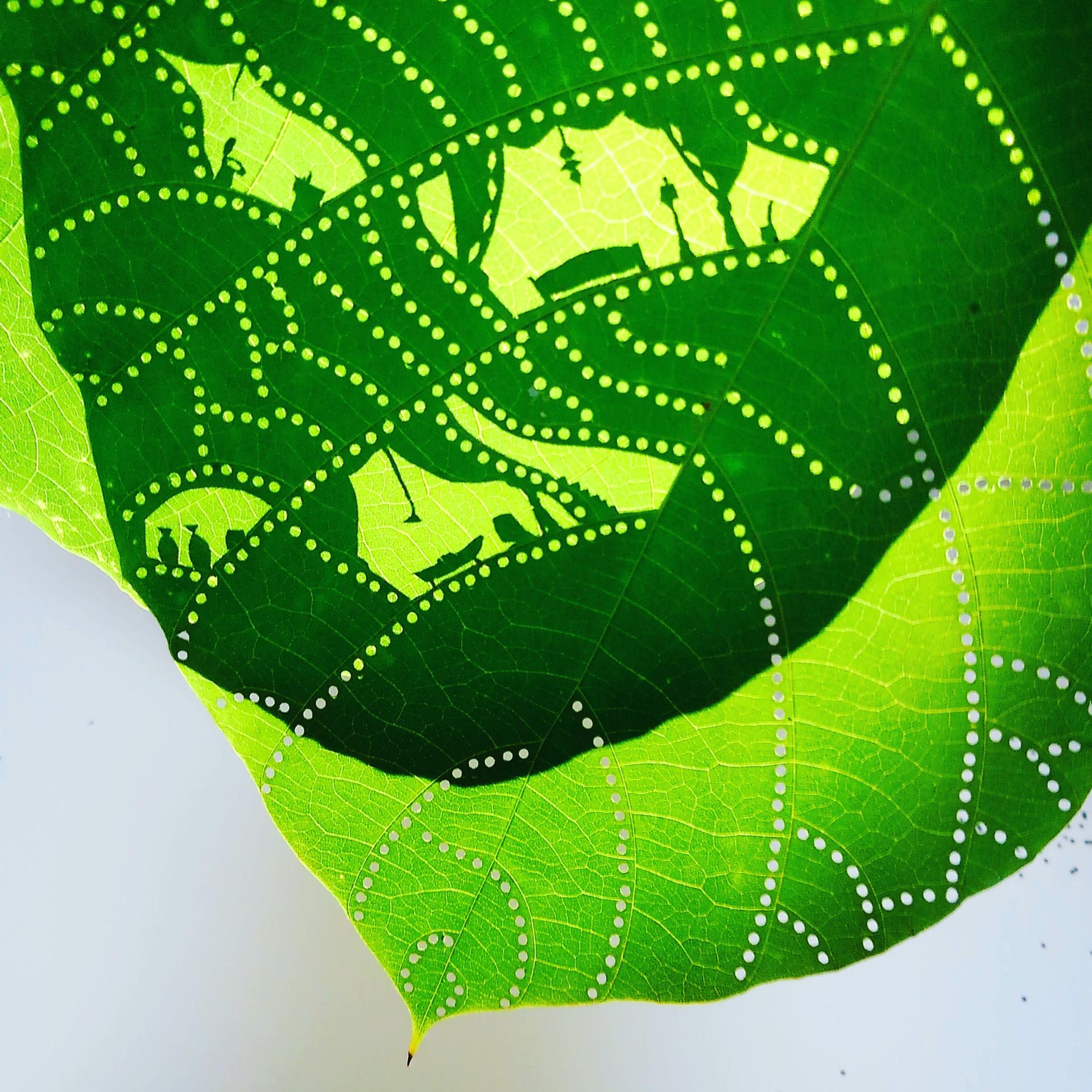 Leaves cutout 4