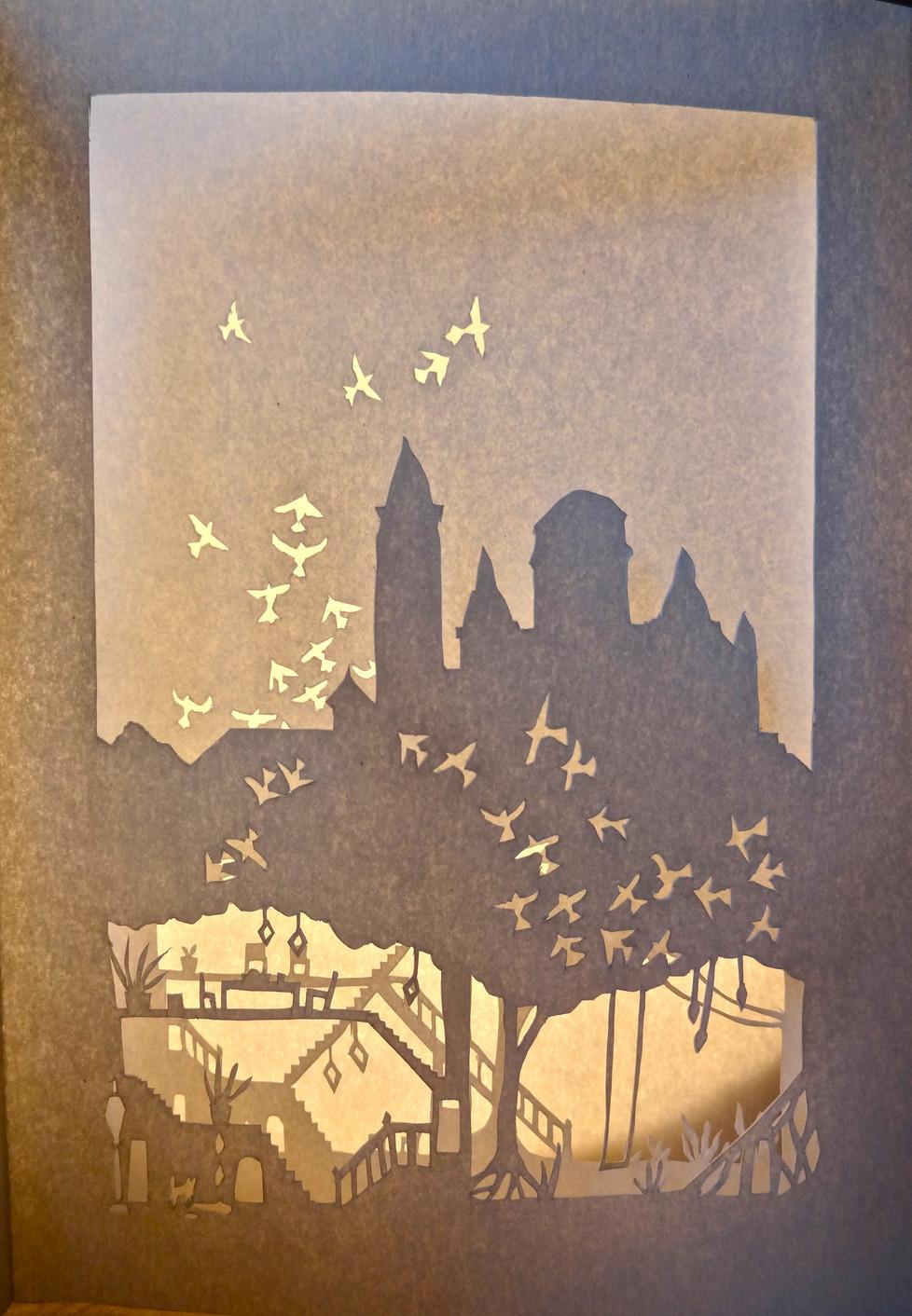 Petit Paris Book