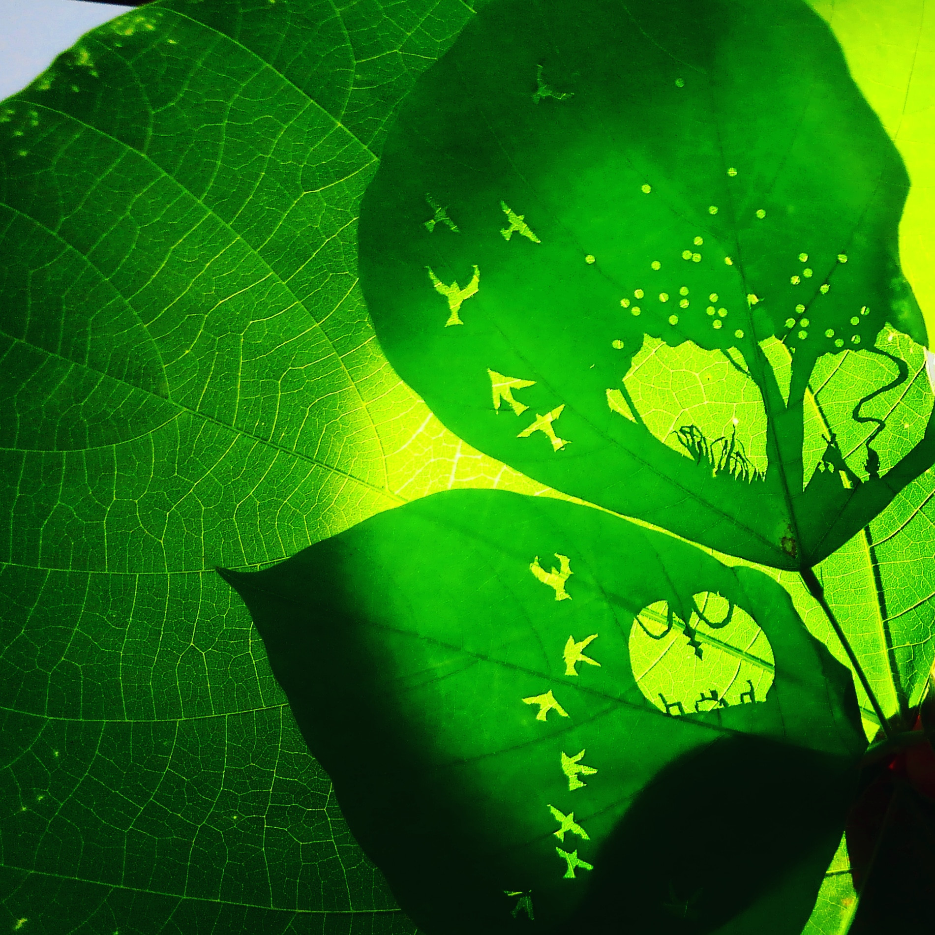 Leaves cutout 2