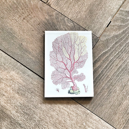 A7 Coral Notepad