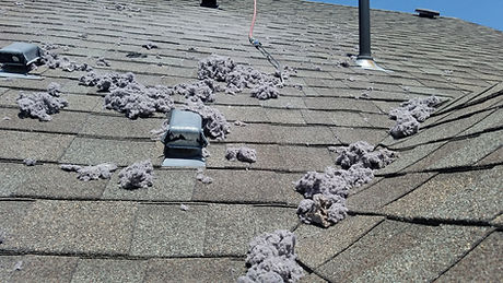 Roof top dryer vent cleaned