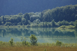 lac-ilay