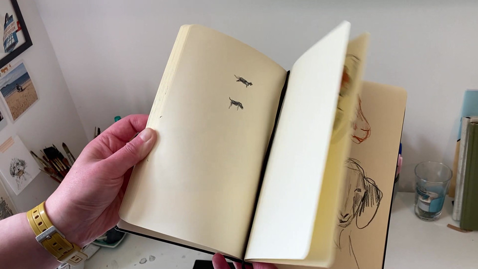 Fiona Purves Illustration