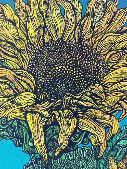 Rachel Meehan | Sun Flowers