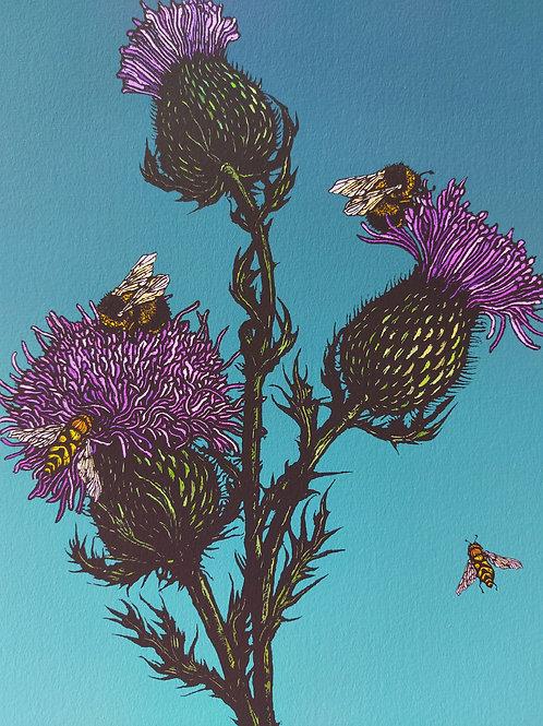 Rachel Meehan   Thistles & Bees