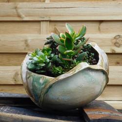 Ipsokipso Ceramics