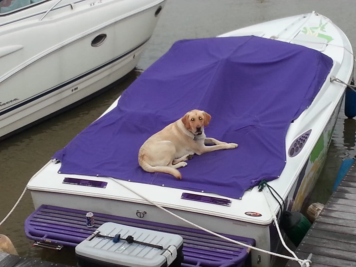 Protecting dads boat