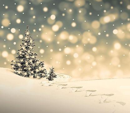christmas-3864540_1920 - Kopie.jpg