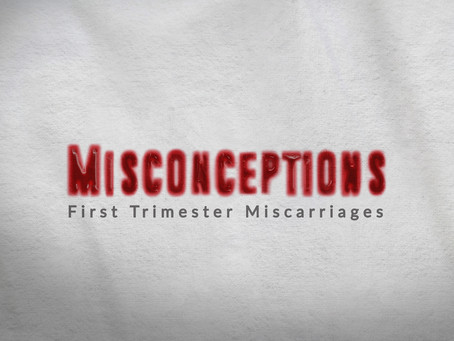 Misconceptions full series playlist