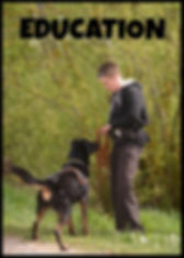 Education canine Auxerre