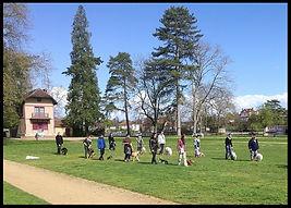 Séance collective éducative Auxerre
