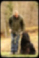 education canine auxerre - dressage chien auxerre - cani cat's center
