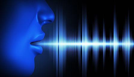sofstack Speech Recognition services.jpg